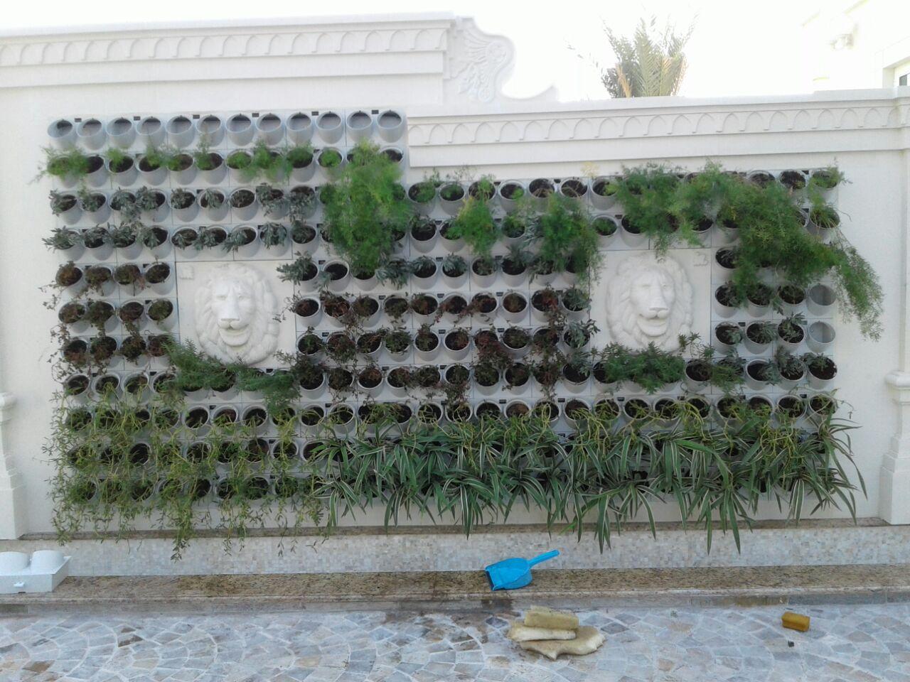 garden spot - Garden Spot
